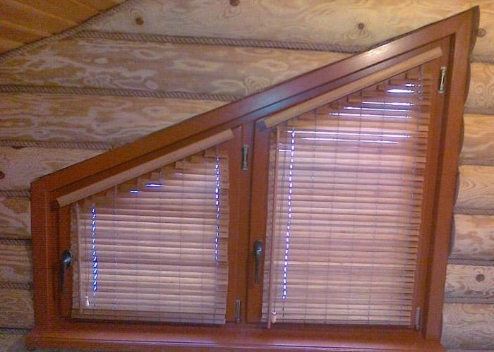 Бамбук на окнах
